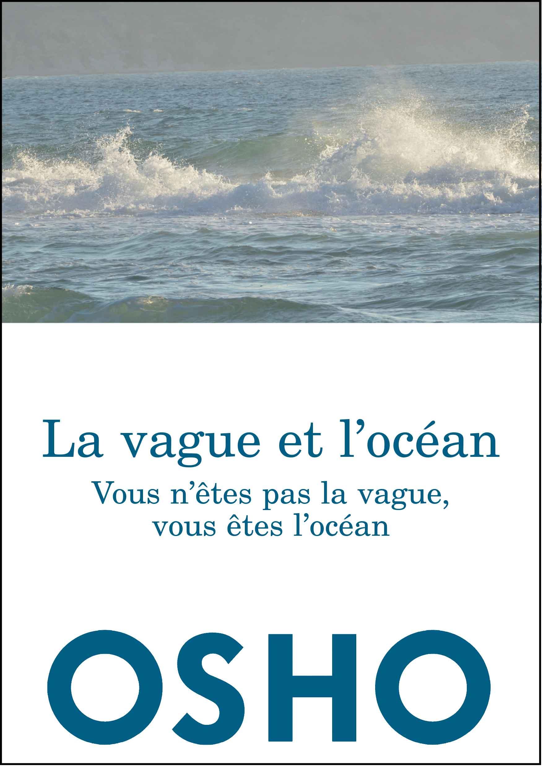 La vague et l'océan